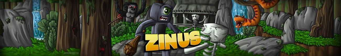 Banner Zinus