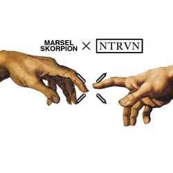 MarselSkorpion